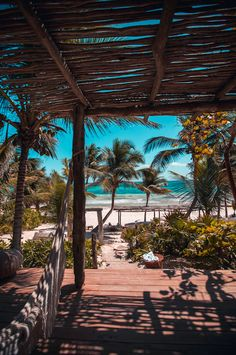 Heading to Tulum for a vacation? Before you jet set here are a few Tulum travel tips you should keep in mind that will help you have a problem-free trip. Beach Aesthetic, Travel Aesthetic, Natur Wallpaper, Tree Wallpaper, Wallpaper Pictures, Wallpaper Wallpapers, Tulum Beach, Miami Beach, Tulum Mexico