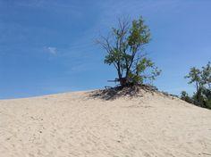 Sand banks