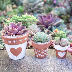Valentine's Day DIY - Painted Terra Cotta Pots These cute 'lil Painted Terra Cotta Pots are a cute Flower Pot Art, Flower Pot Design, Flower Pot Crafts, Clay Pot Crafts, Painted Plant Pots, Painted Flower Pots, Pots D'argile, Decorated Flower Pots, Valentine's Day Diy