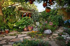 Tuscan Style Frontyard Ideas Neat Edible Front Yard