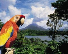 Costa Rica - the volcanoes, beaches, eco-adventures, ruins