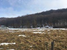 Stavebný pozemok pod Lesom, 2.000 m2 - 17 km od Prešova | REGIO-REAL s.r.o. (reality Prešov a okolie)