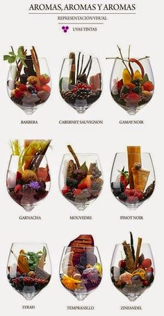 The expression in vino veritas comes from the Romans. Wine Facts, Wine Vineyards, Wine Folly, Café Bar, Wine Guide, Wine Cheese, In Vino Veritas, Italian Wine, Wine And Beer