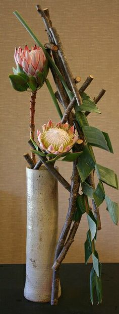 Ikebana-Hana Dome - King Protea and manipulated strelitzia (bird of paradise) leaves - by sogetsu (Keith Stanley) Tropical Flower Arrangements, Ikebana Flower Arrangement, Ikebana Arrangements, Design Floral, Deco Floral, Arte Floral, Flower Show, Flower Art, Ikebana Sogetsu