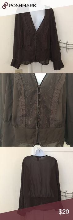 Lane Bryant sheer blouse Beautiful sheer brown blouse from Lane Bryant.  Size 14/16.  Sheer material and the bosom area had a velvet lining with lace detail and then buttons.  100% polyester.  Hand wash cold and line dry. Lane Bryant Tops Blouses