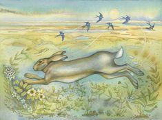 Hare sur la Saltmarsh (print)