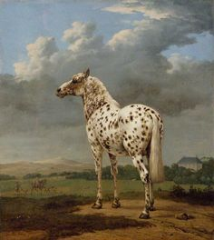 "painting of an Appaloosa by George Stubbs (Normally I would have thought that this is the old european breed ""Knabstrupper"")"