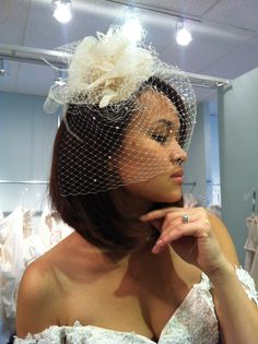 Birdcage vintage veil