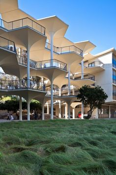 UCSD: A Built History of Modernism (The Breezeway, Revelle College)    Love the architecture and grass in front