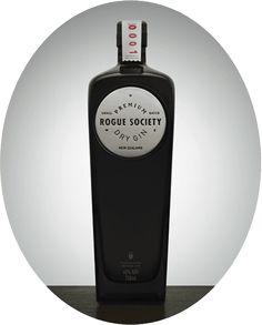 """We like that the """"Rogue Society Gin"""" website reads as a story as you scroll down, but there are also navigation at the top and on the side for quick access to the specific information points."""