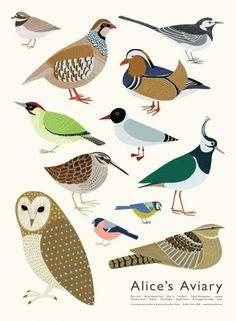 Birdies Alice's aviary by Alice melvin