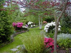 Landscaping Ideas For Front Yard Ranch House | front lawn landscaping ideas | Aquaponics Systems Design