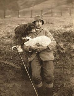Shepherd with a sheep and his dog