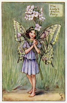 Lady's-Smock Flower Fairy Vintage Print, c.1927 Cicely Mary Barker Book Plate Illustration