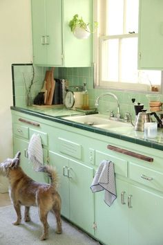 Vintage Retro Style this looks like my first houses vintage kitchen in Glendale California. I ended up painting it yellow. That worked too. - Your home for all things Design. Home Tours, DIY Project, City Guides, Shopping Guides, Before Sage Green Kitchen, Green Kitchen Walls, Mint Kitchen, Green Kitchen Cabinets, Painting Kitchen Cabinets, Kitchen Paint, Rustic Kitchen, New Kitchen, Kitchen Decor