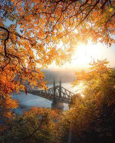 Autunn in Budapest, Benjamin Hegyi Liberty Bridge, Sacred Geometry Art, Destinations, Most Beautiful Cities, Central Europe, Budapest Hungary, Beautiful Landscapes, Cool Photos, Sunrise