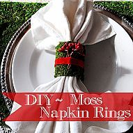 I created some Mossy Napkin Rings to go with the other moss pieces in… :: Hometalk