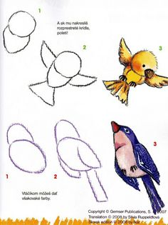 model voor viltvogel birds