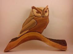 Owl Intarsia by Sean Coffey