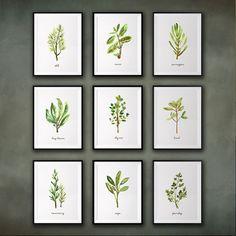 Herb Watercolor Painting, Kitchen Art, Set Of 9 Herb Print, Botanical Print,