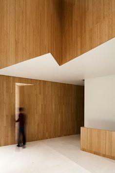 Secret House by AGi Architects