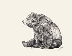 bear, art inspir, sandra dieckmann