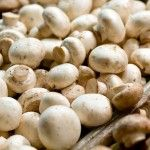 button_shrooms http://www.studio27fashion.com/2014/03/20/how-to-get-rid-of-winter-pounds-by-eating-more-top-25-foods-that-increase-weight-loss-fast/