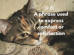 15 Beautiful Dutch Words and Phrases We Need in English