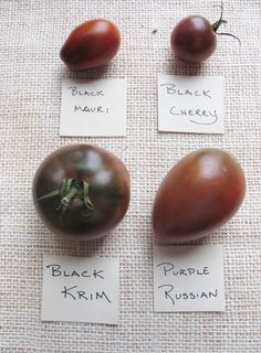 """Black"" Heirloom Tomato Varieties - small"