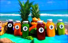Swami Juice, Cold pressed Juice out of South Florida! Cold pressed = Instant Nutrition #swamijuice #juicelife #coldpressedjuice #coldpressed #juicing #vegetablejuice #fruitjuice #gingershots