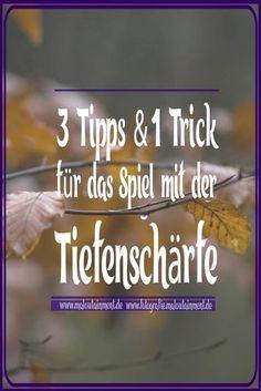 3 Tipps U0026 1 Trick Für Geringere Tiefenschärfe In Einem Bild