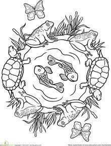 pond habitat coloring pages-#27