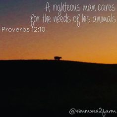 """Farmers care #farmerscare #proverbs12 #Godsdesign #lovefarmlife #fortheloveofcows #fortheloveoffarmlife #dairyfarm #WithoutTheCowsWhereWouldWeBe…"""