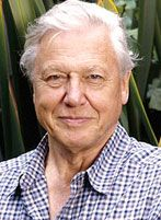 Sir David Attenborough had an incredible career of 60 years ground breaking Television. David Attenborough started his career when he .