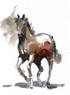 water color horses | home paintings travelling watercolors life studies horses watercolors ...