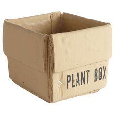 Plant Box Cachepot