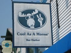 Cool as a moose store in Bah Hahbah...or for non-Mainahs...Bar Harbor
