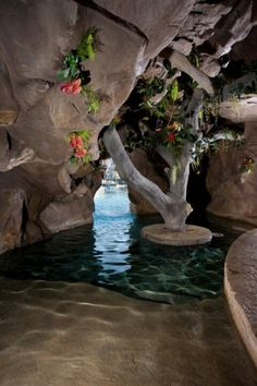 Grotto Pool