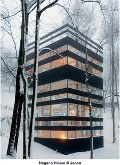 ...to a modern home in the woods during winter.