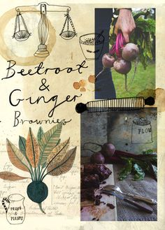 Making beetroot and ginger brownies. Illustration and typography by Katt Frank Photography by Sean St John. Food Illustrations, Illustration Art, Sketchbook Assignments, You Draw, Beetroot, Art Plastique, Collages, Food Art, Journaling