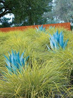 """California: Andrea Cochran To contrast the billowy tufts, Cochran inserted blue-toned agave. """"Drought-tolerant and hardy enough to handle the intensive sun exposure of this location, both of these plants are regionally appropriate,"""" says Cochran. """"California is in the midst of a drought; we need to consider water-conserving plants."""""""