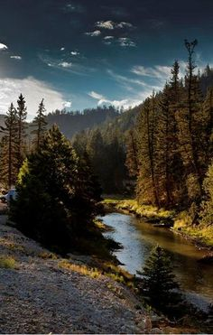 RV Resorts & Camping | Red River, New Mexico