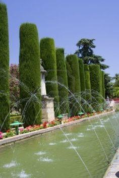Gardens of the Alcazar palace in Cordoba.