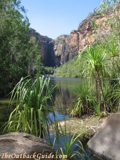 Kakadu National Park, National Parks, Tasmania, Places Ive Been, Places To Go, Nothing Gold Can Stay, Australian Continent, Caravan Ideas, Great Barrier Reef