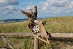 Driftwood Doilies, A Baltic Sea Beach Art Installation by NeSpoon