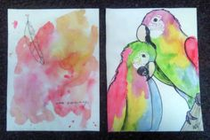 Bird and feather watercolor drawings with ink -- Alicia Stamm