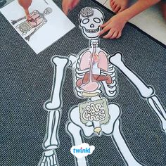 Human Body Organs and Skeleton Cut-Outs! - Sachunterricht Grundschule - Human Body Organs and Skeleton Cut-Outs! Science Lessons, Science Activities, Science Projects, Life Science, Science Biology, Preschool Science, Human Body Organs, Human Body Unit, Human Body Systems