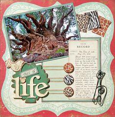 #scrapbook  #disney #animalkingdom WDW Animal Kingdom, Tree of Life