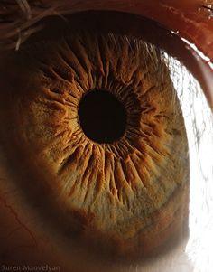 el impresionante relieve del iris de un ojo humano por Suren Manvelyan