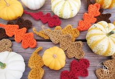 Get your crochet on for Fall project with this Fall Oak Crochet Leaves Free Crochet Pattern! Great for Fall decorating, banners, appliques, and gift decorations! Crochet Leaf Patterns, Crochet Leaves, Crochet Fall, Crochet Flowers, Free Crochet, Crochet Cocoon, Crochet Appliques, Halloween Crochet, Holiday Crochet